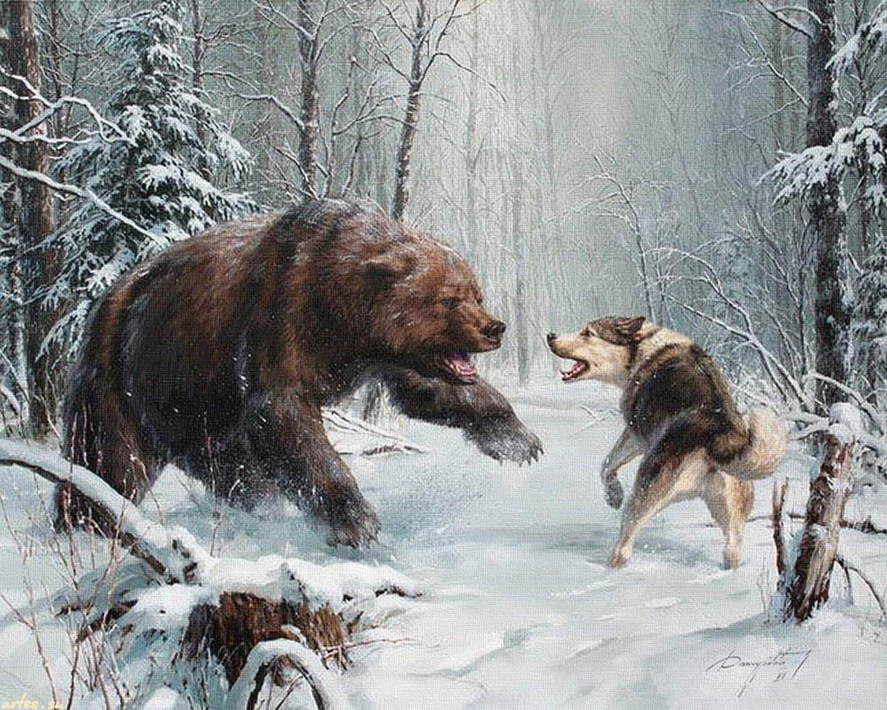 рисунки медведя в лесу