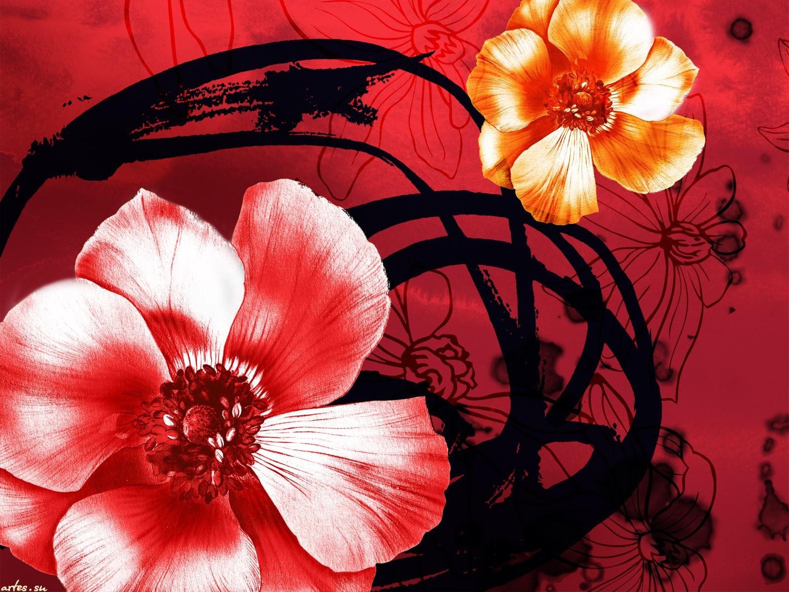 фото и рисунки цветов для открыток