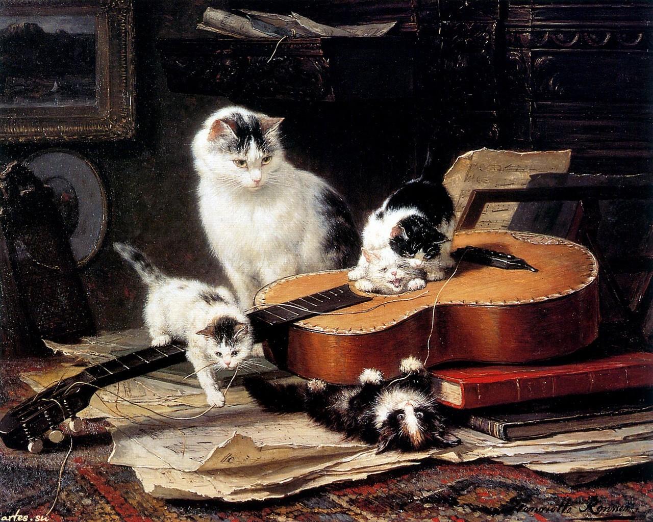 О котах и кошках сценарий