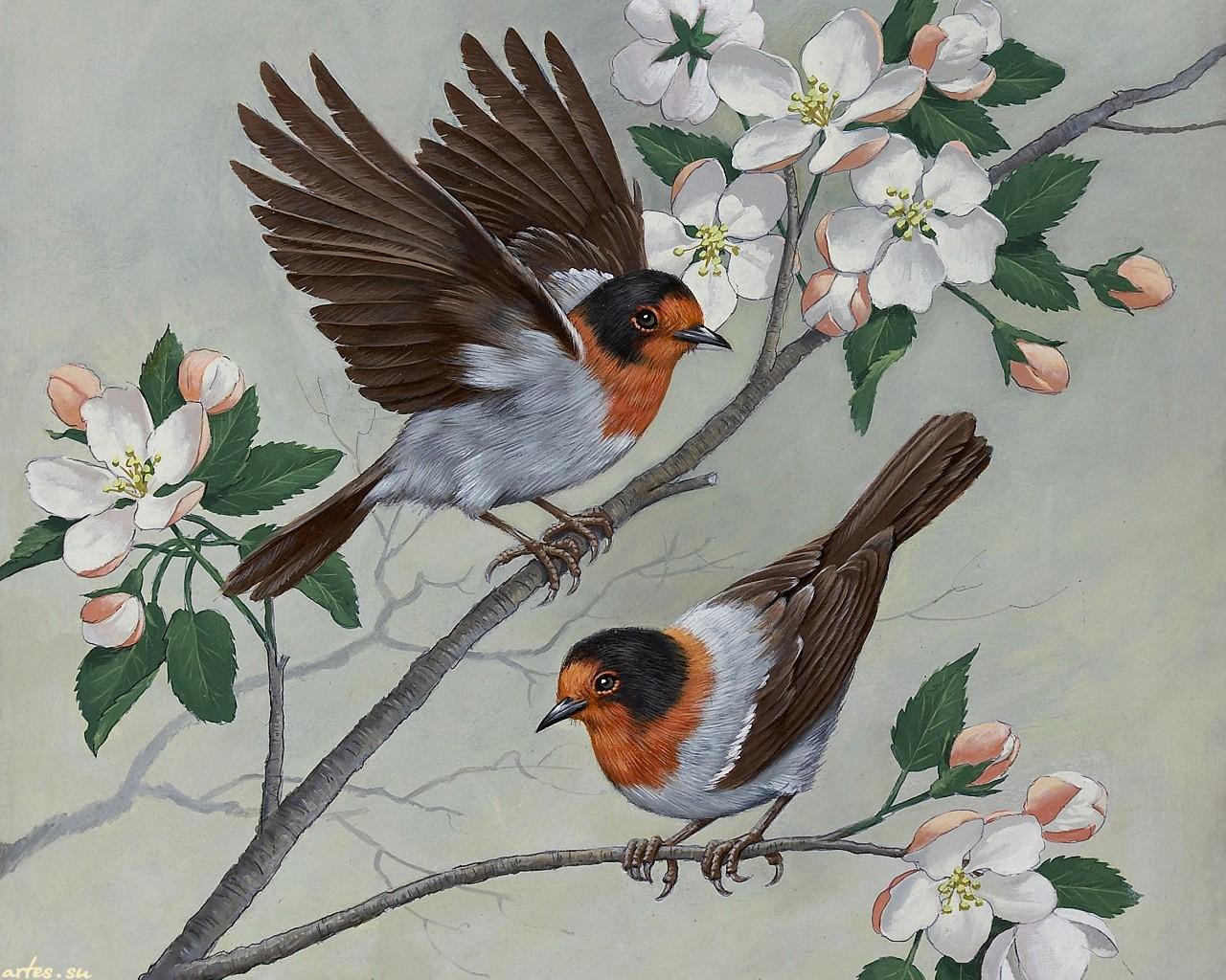 рисунок птички детский
