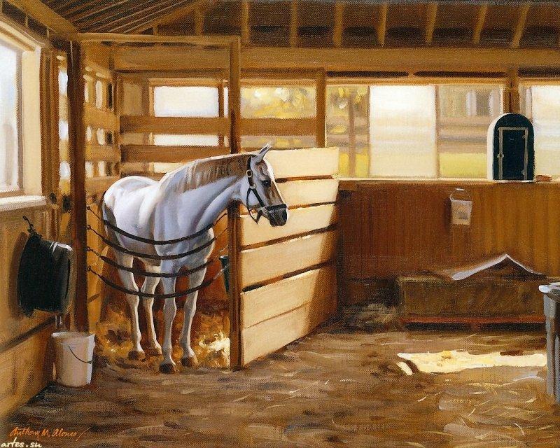 Денники для лошадей своими руками