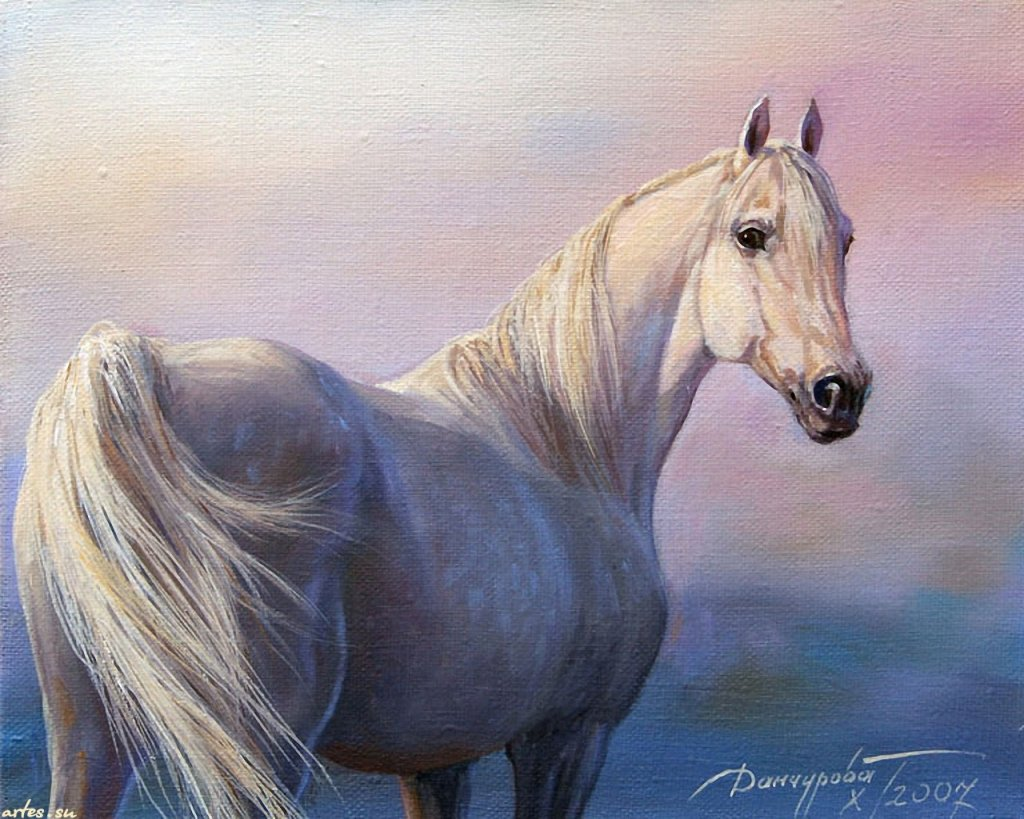 Скачать обои животные, белая лошадь, Татьяна Данчурова 1024x768