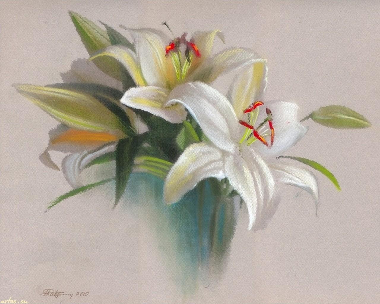 Фото белой лилии