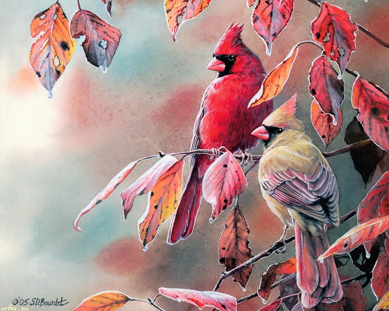 Картинки на рабочий стол осень птицы